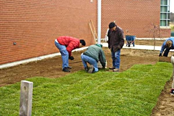 Topsoil is laid down under fresh sod
