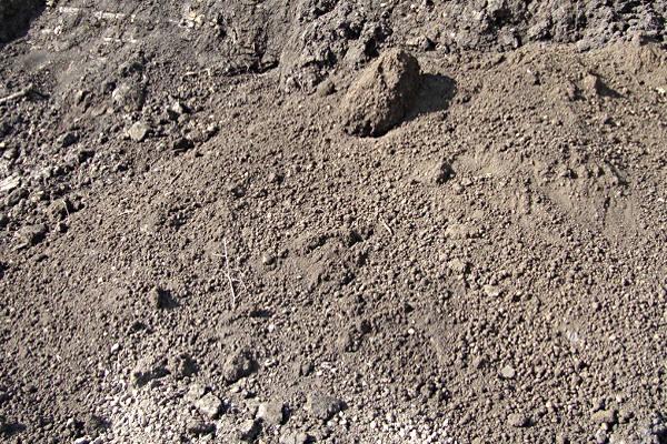 Raw Topsoil